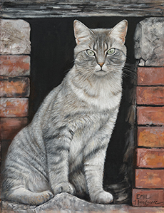Cat Portrait - Julia Ciccone